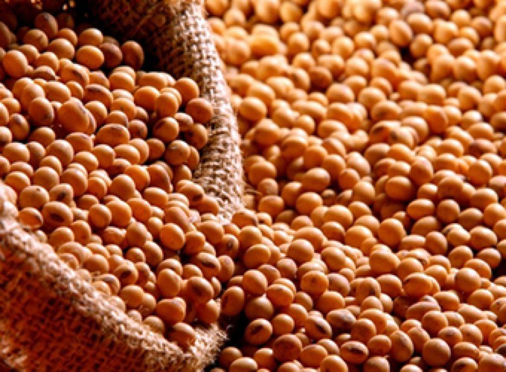 Zastosowanie produktów sojowych w przemyśle piekarniczym i cukierniczym